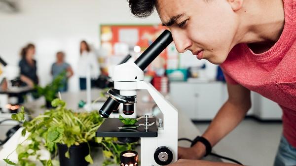 Miller & Levine Biology - Try a Case Study